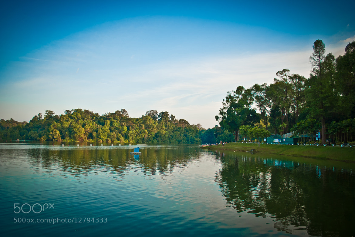 Photograph Macritchie by Charlz Photography on 500px