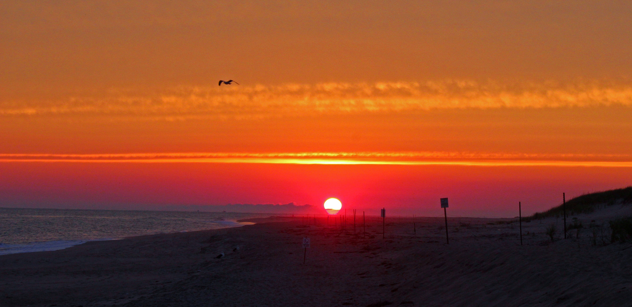 Photograph NANTUCKET ISLAND SUNSET by robin ulery on 500px