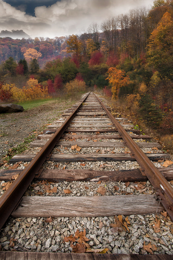 Fall up the tracks