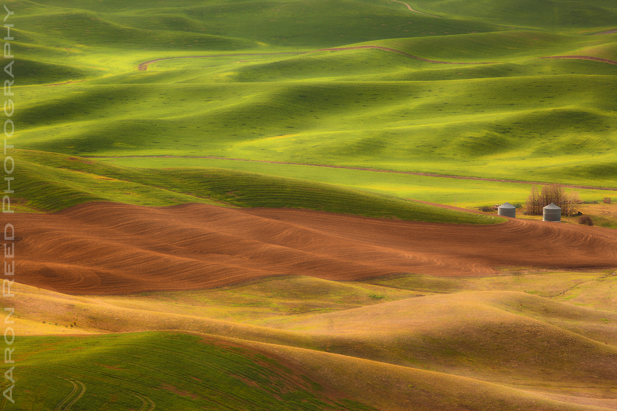 Photograph Waves Of Grain by Aaron Reed on 500px