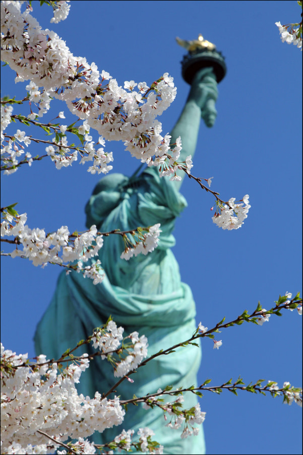 Statue of Liberty in Spring