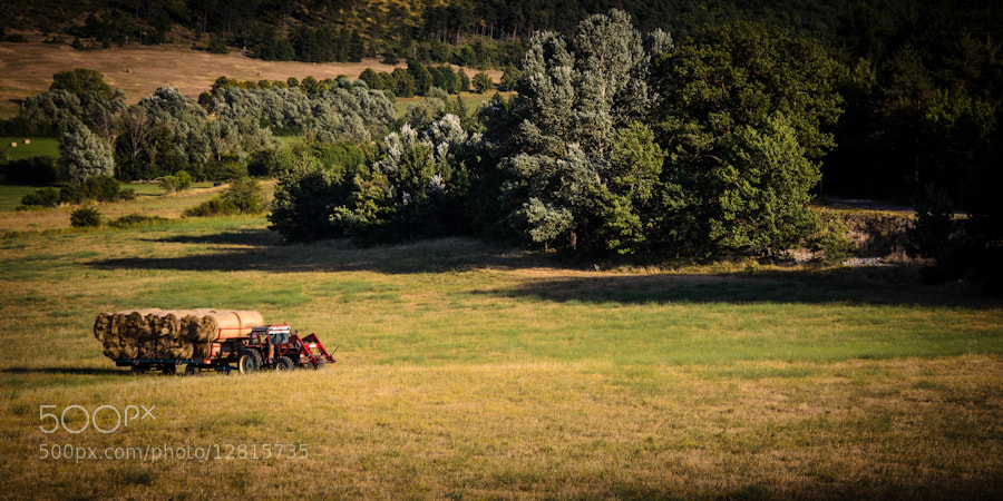 Photograph Provence - Working on the fields by Mariano A. Medda on 500px