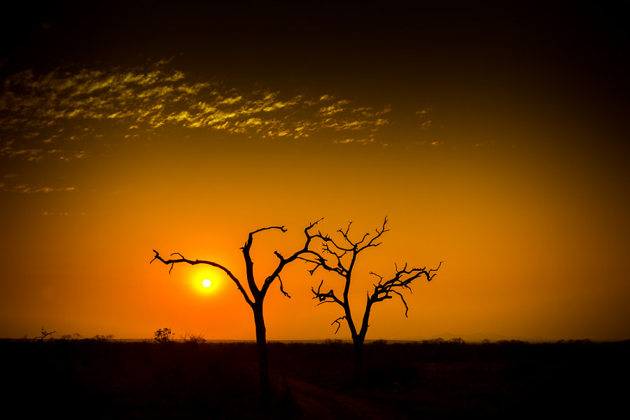 African Sky by Kerstin  on 500px.com