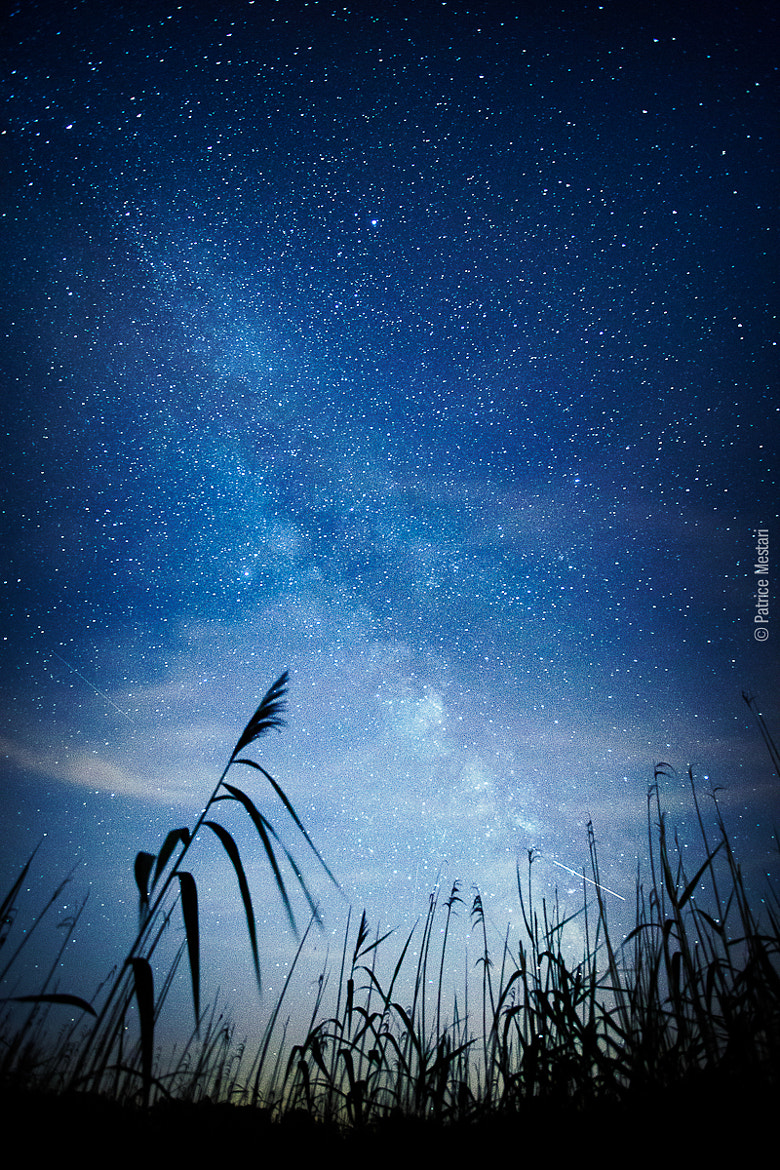 Photograph Milky Way - Gletterens - Suisse by Patrice MESTARI on 500px