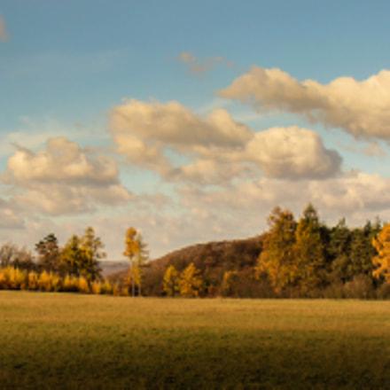 november nature