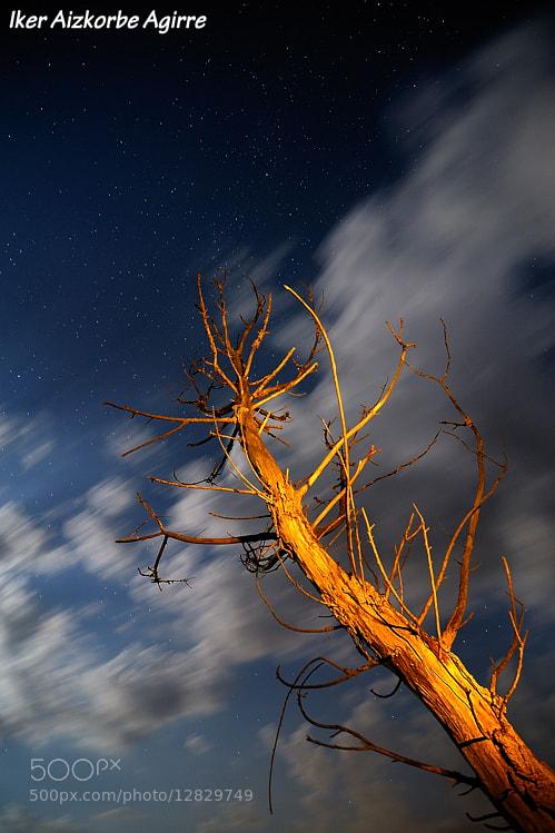Photograph Argiekin jolasean / Jugando con las luces / Playing with lights by Iker Aizkorbe on 500px