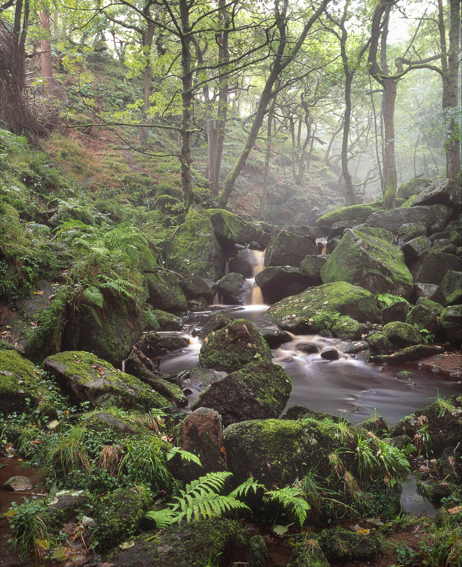 Photograph Padley Mist by david breen on 500px