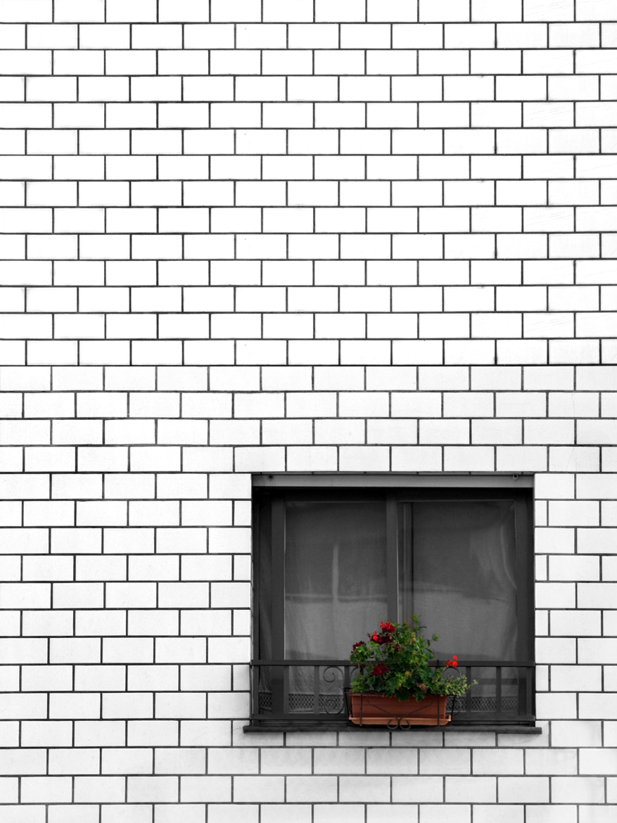 Photograph The Wall by Manolo Toledo on 500px