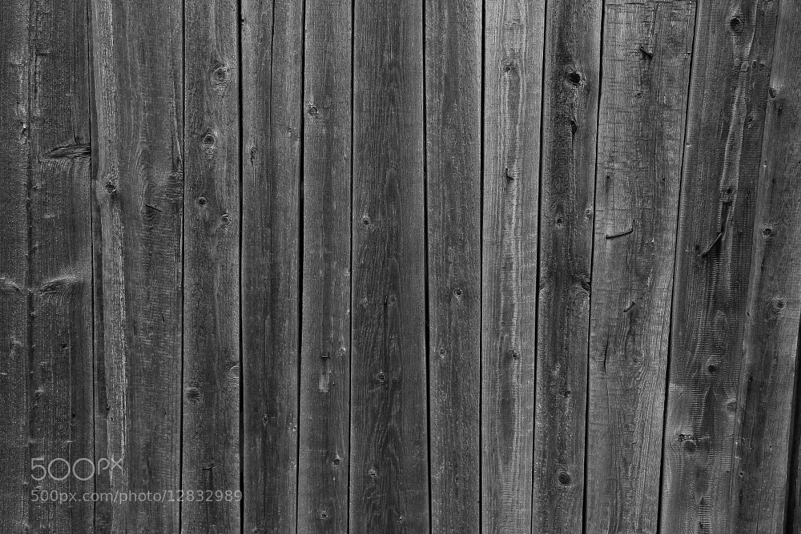Wood Fence Texture : Photograph Wooden fence texture by Andrey Basinskiy on 500px