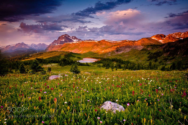 Photograph Banff Summer by Dan Ballard on 500px