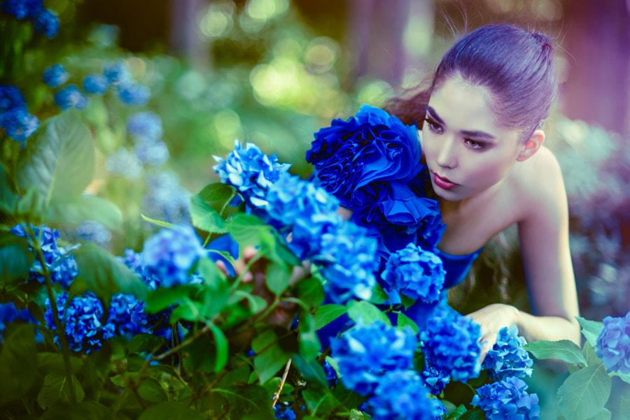 Blue Garden de Jiamin Zhu sur500px.com