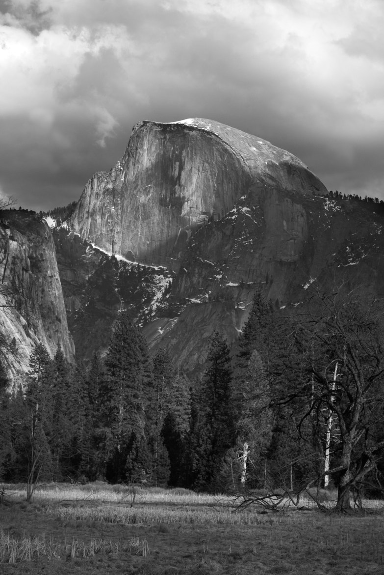 Photograph Half Dome and Meadow by Billy Sauerland on 500px