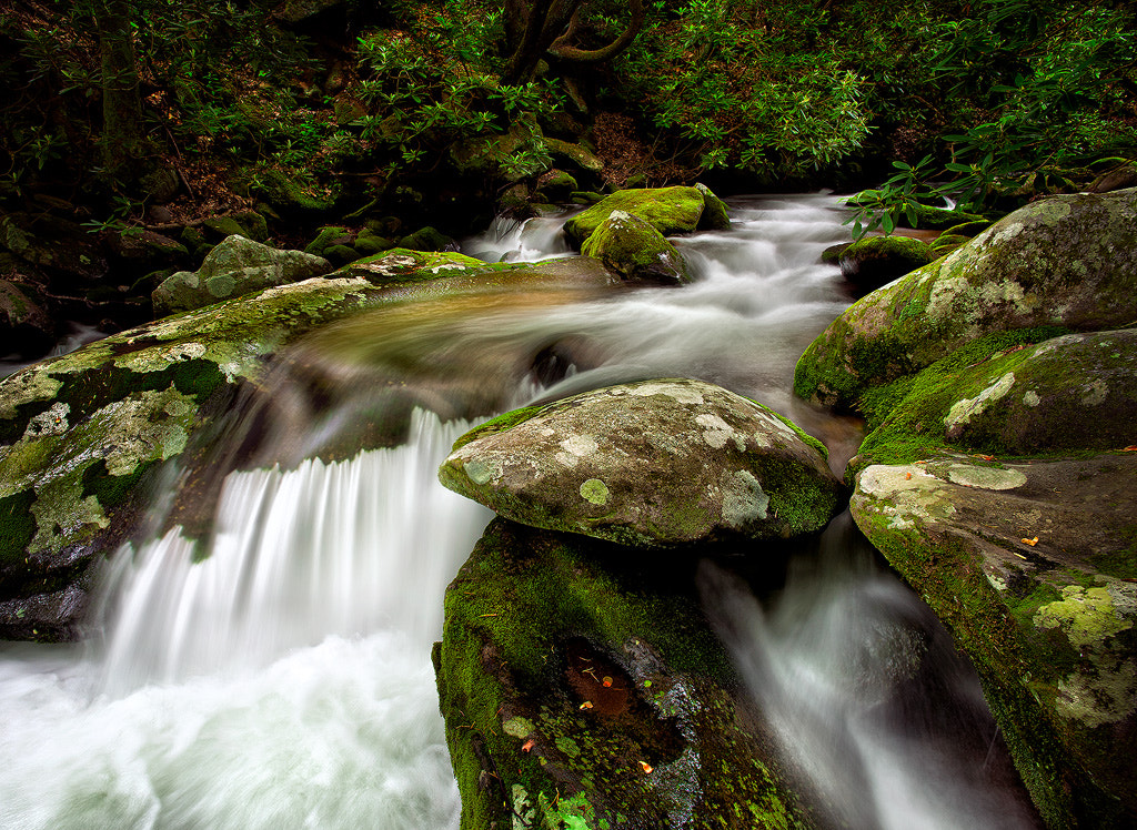 Photograph Roaring Fork Rush by Steve Perry on 500px