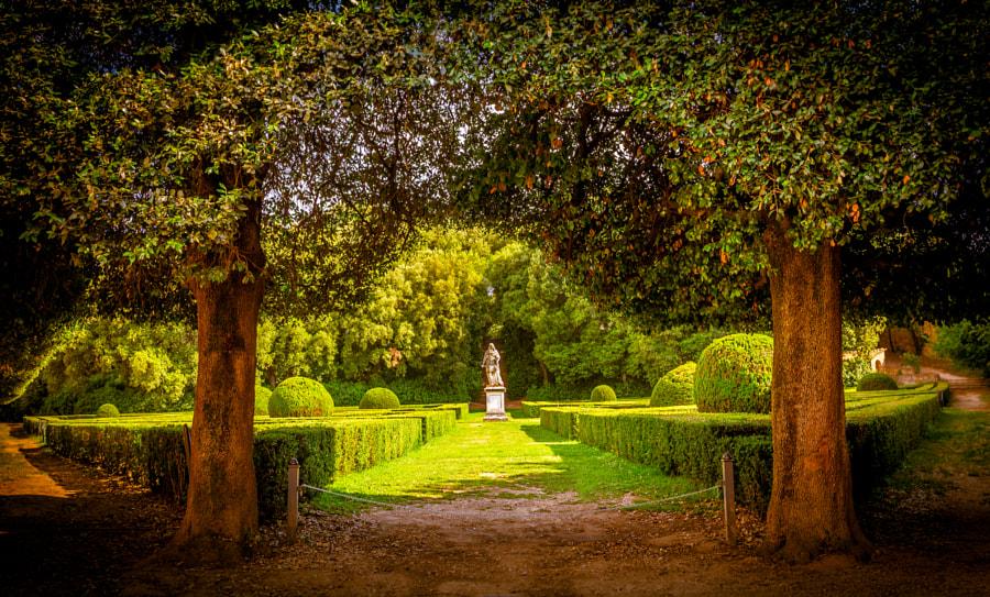 The Leonini Gardens, Tuscany by Maciej Czekajewski on 500px.com