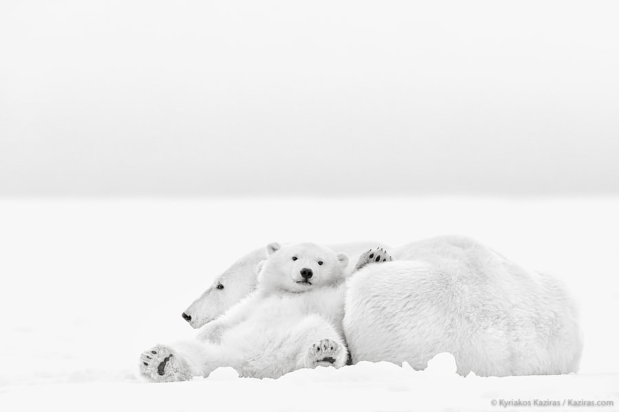 The nap III by Kyriakos Kaziras on 500px.com