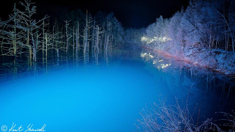 v2?webp=true&sig=f4f9d9dda39ddb842c4d4170638a2c3bd2b89c480d111fcd86c43dc285444d66 L'étang bleu d'Hokkaido en toutes saisons par Kent Shiraishi