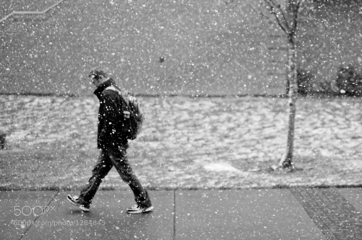 Photograph Walking Snow by Thomas Bishop on 500px