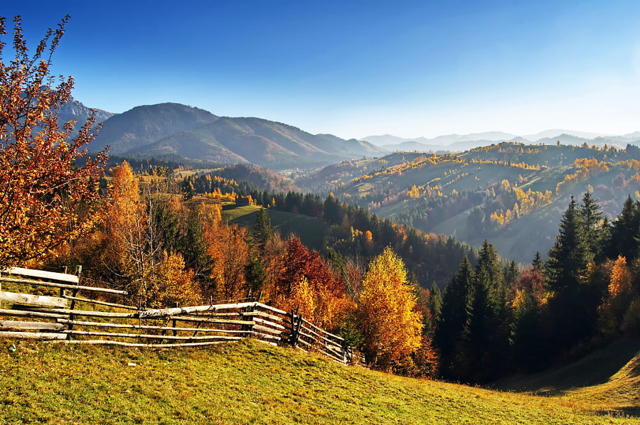 fall season in Bran Romania transylvania by Dan Baciu on 500px.com