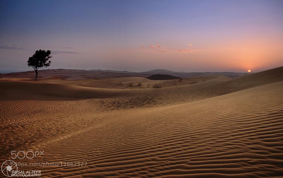 Photograph DESERT by فيصل الزير on 500px