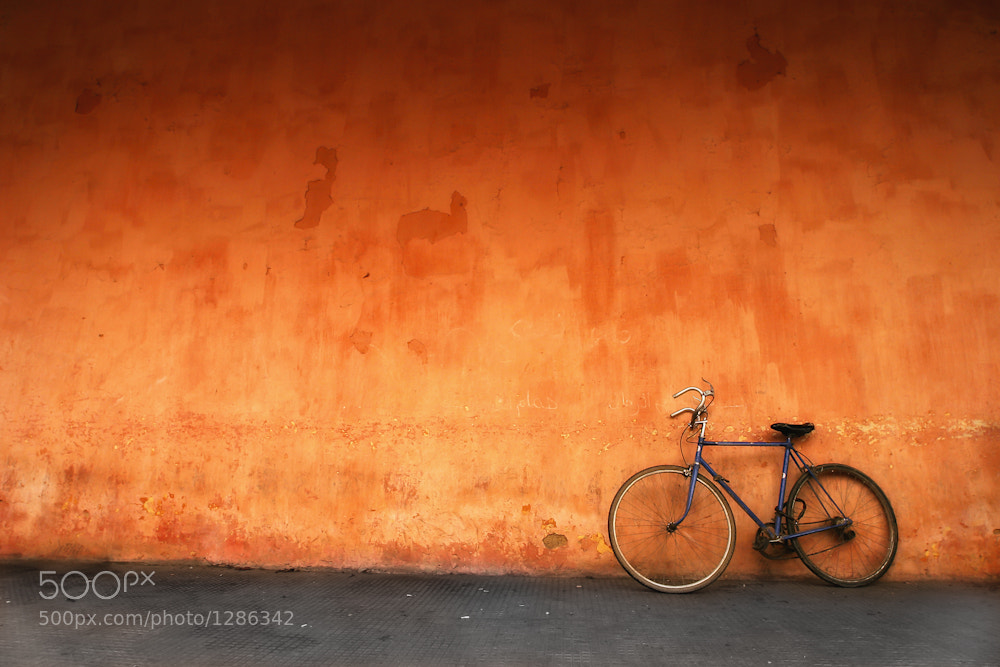 Photograph Morocco Bike by Mario Moreno on 500px