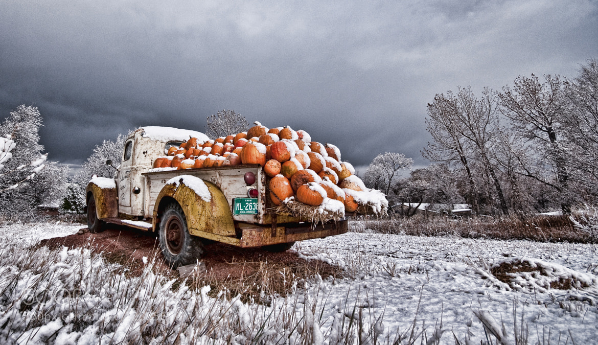 Photograph Cold Pumpkins by WilsonAxpe /  Scott Wilson on 500px