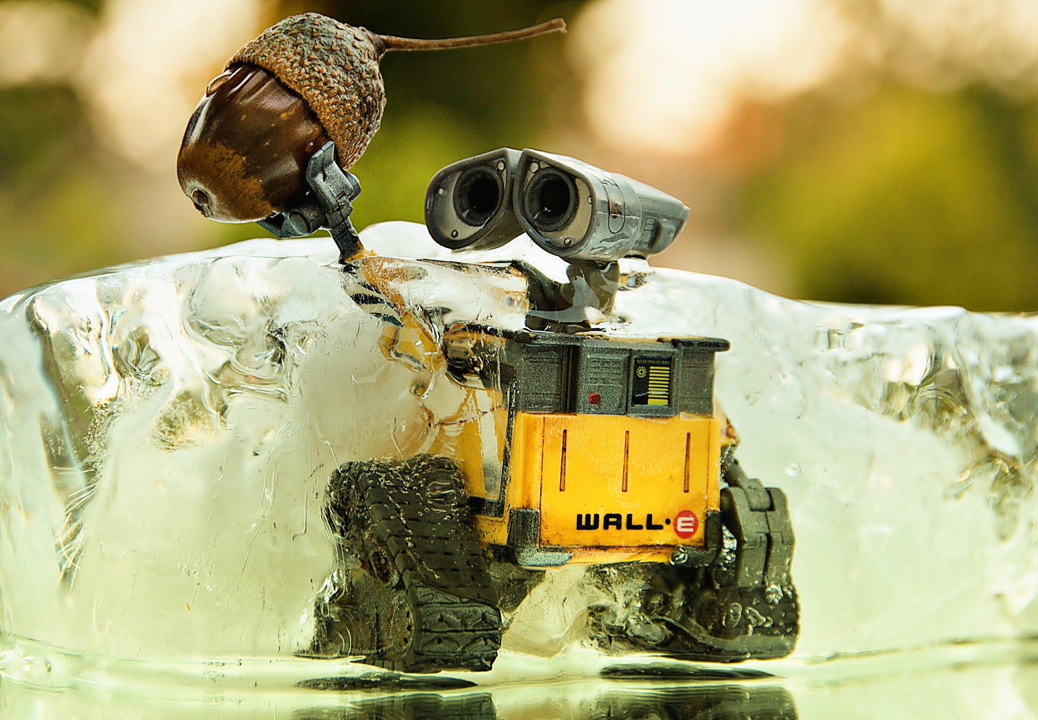 Photograph Wall-E in the Ice Age... by Filipe Sequeira on 500px