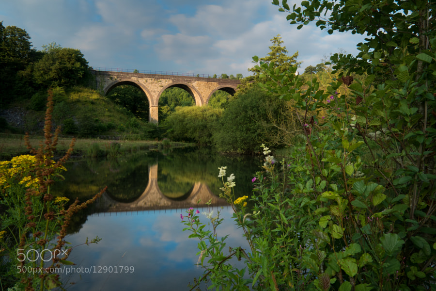 Monsall Viaduct reflected in the River.
