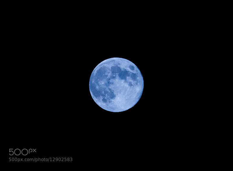 Photograph Blue Moon by Rodrigo Mortágua on 500px