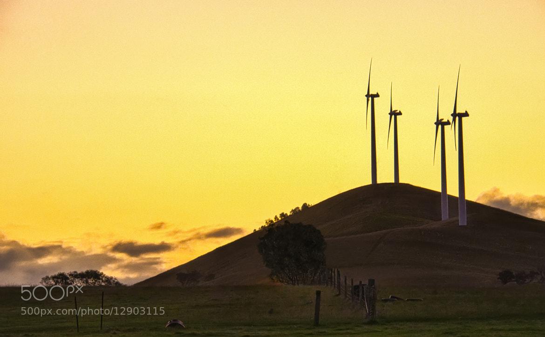 Photograph Wind-farm by Pieter Pretorius on 500px