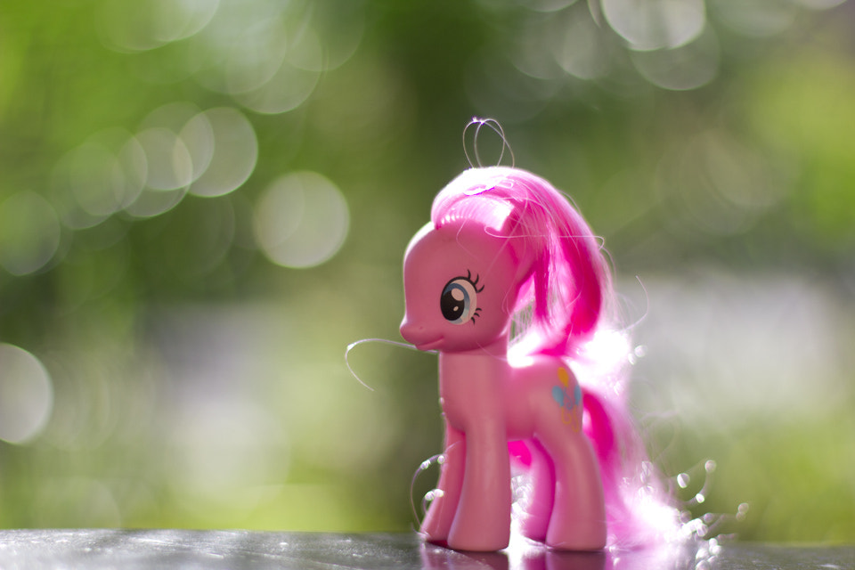 Photograph Pinkie Pie by LM Photography on 500px