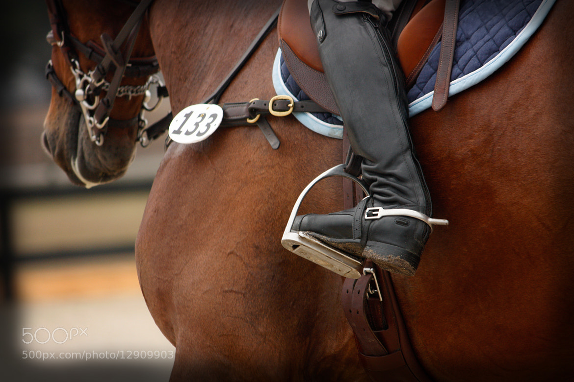 Photograph Boot Stirrup & Spur by Mae Davis~MDavis Photography on 500px
