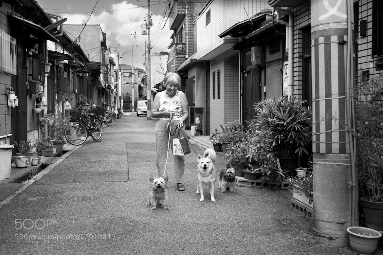 Photograph Afternoon walk by Mitsuru Moriguchi on 500px