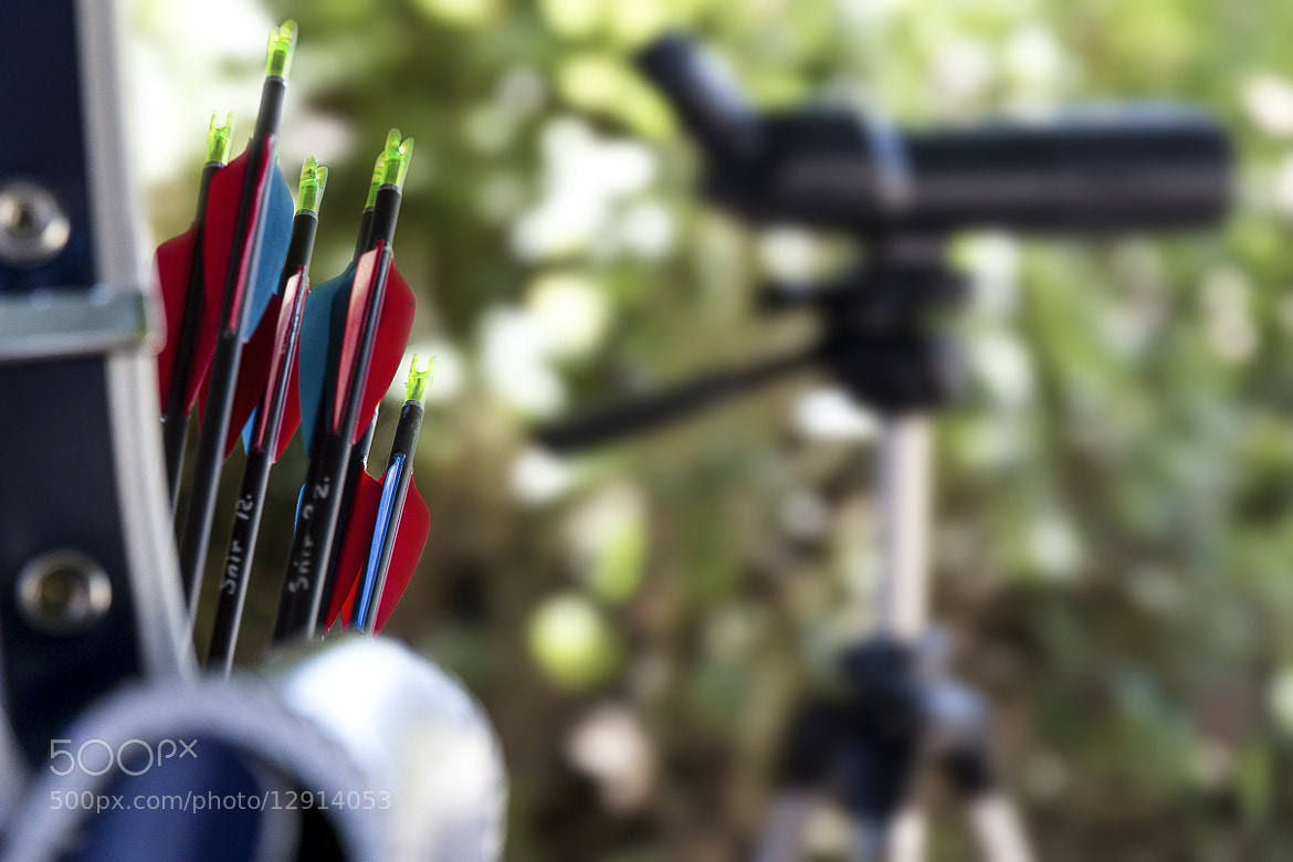 Photograph Arrows of young archers by Mark Kats on 500px