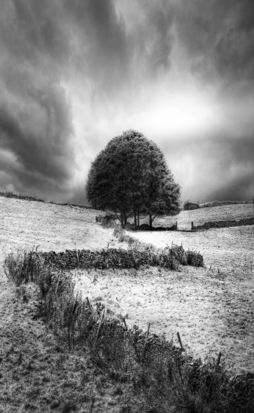 Photograph back white and UK summer grey by David Hobcote on 500px
