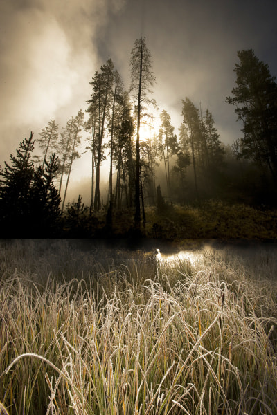 Photograph   frost and fog by David Hobcote on 500px