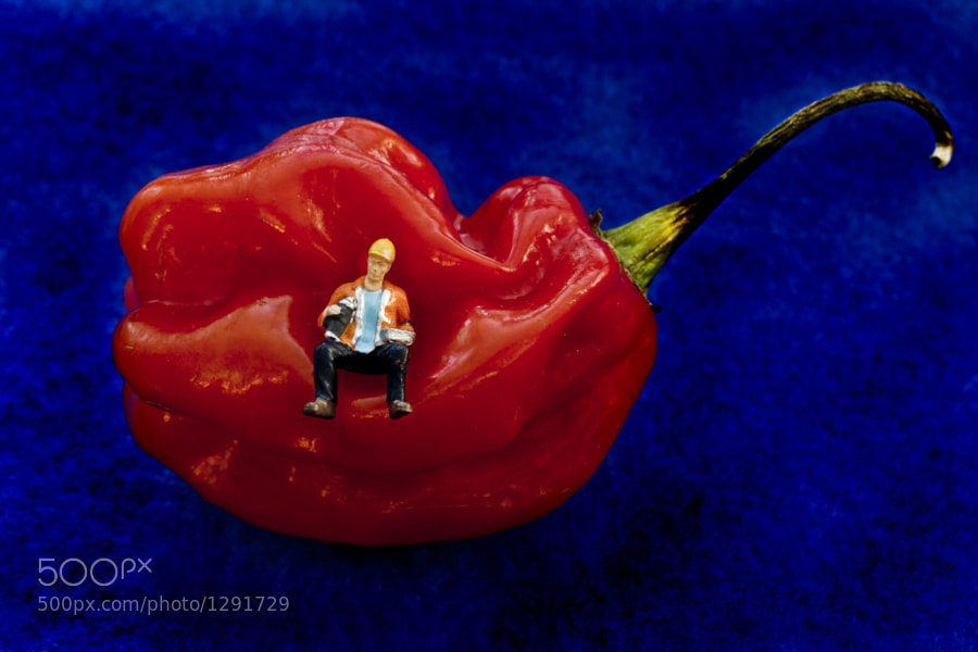 Hot Pepper Break