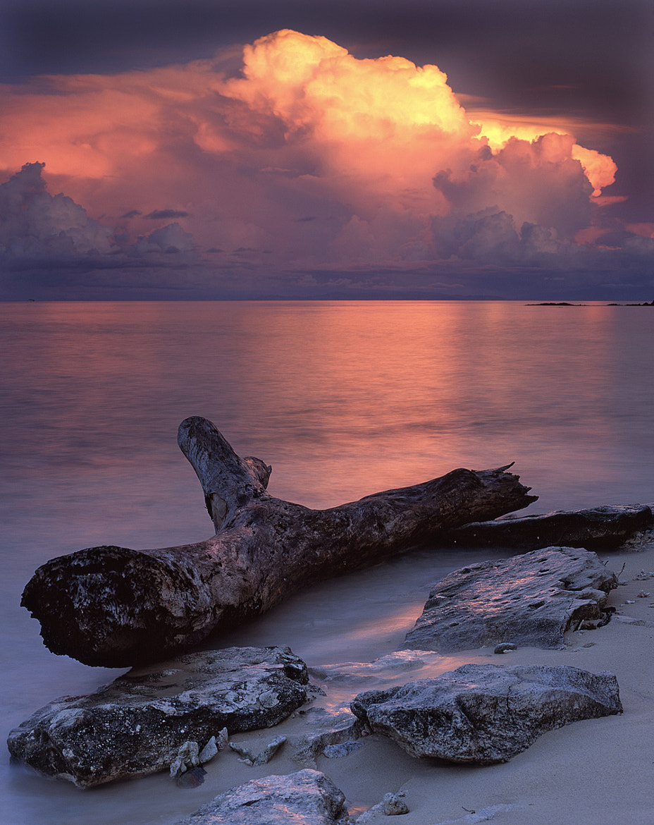 Photograph Rock, Log, and Cloud by Marcus McAdam on 500px