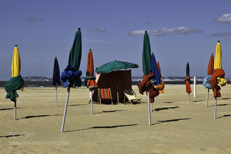 Photograph La fin de l'été by Lucien Vatynan on 500px