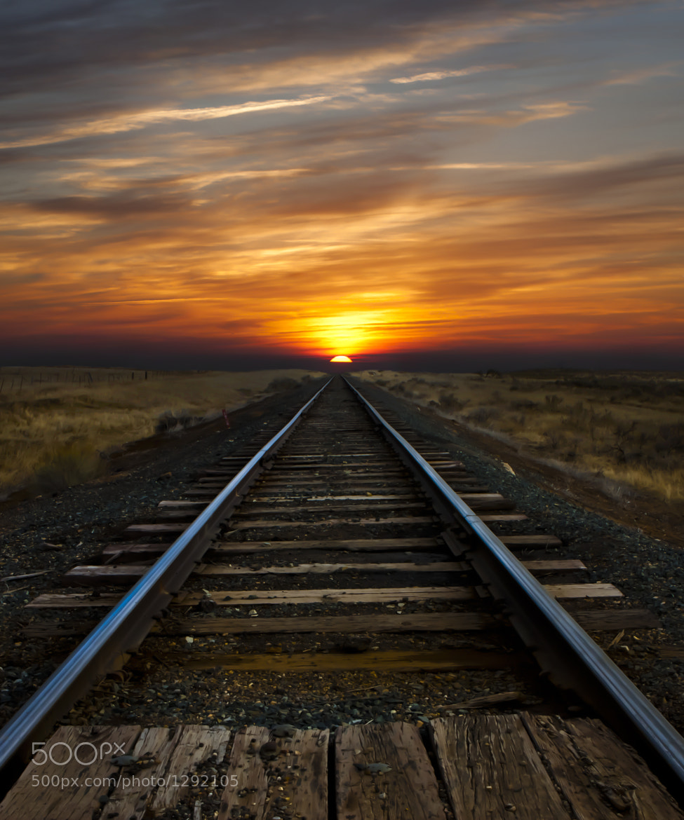 Photograph The Way Home by Mikeal Dixon on 500px
