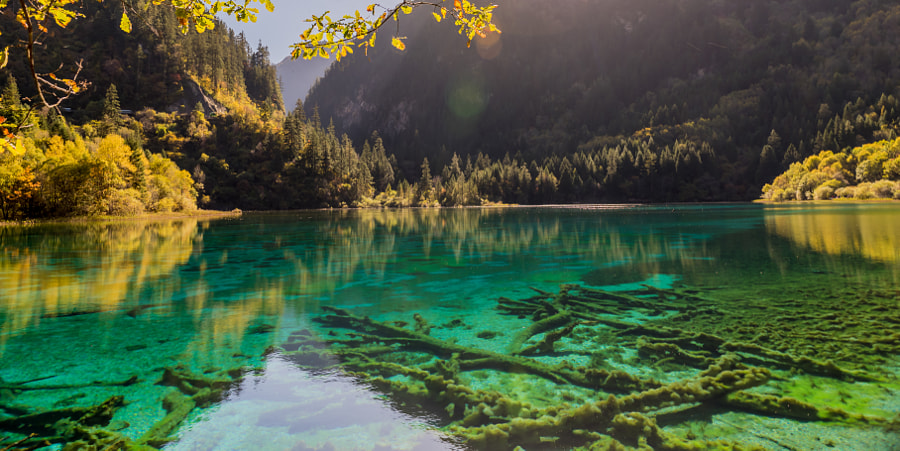 Autumn Water by Jianhua Zhang on 500px.com