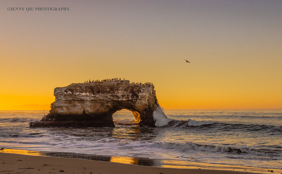 Natural Bridge at Santa Cruz, California by Jenny Qiu on 500px.com