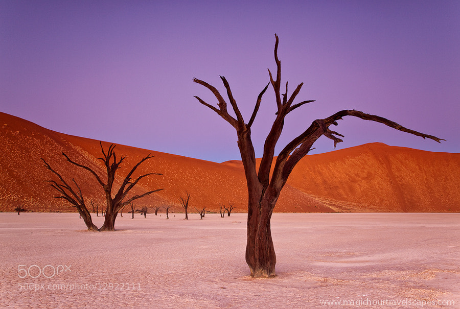 Photograph Pastel Deadvlei by Kah Kit Yoong on 500px