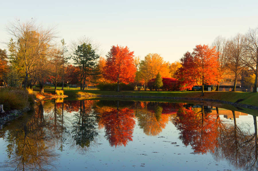 Autumn colours Parsippany by Chike Eduputa on 500px.com