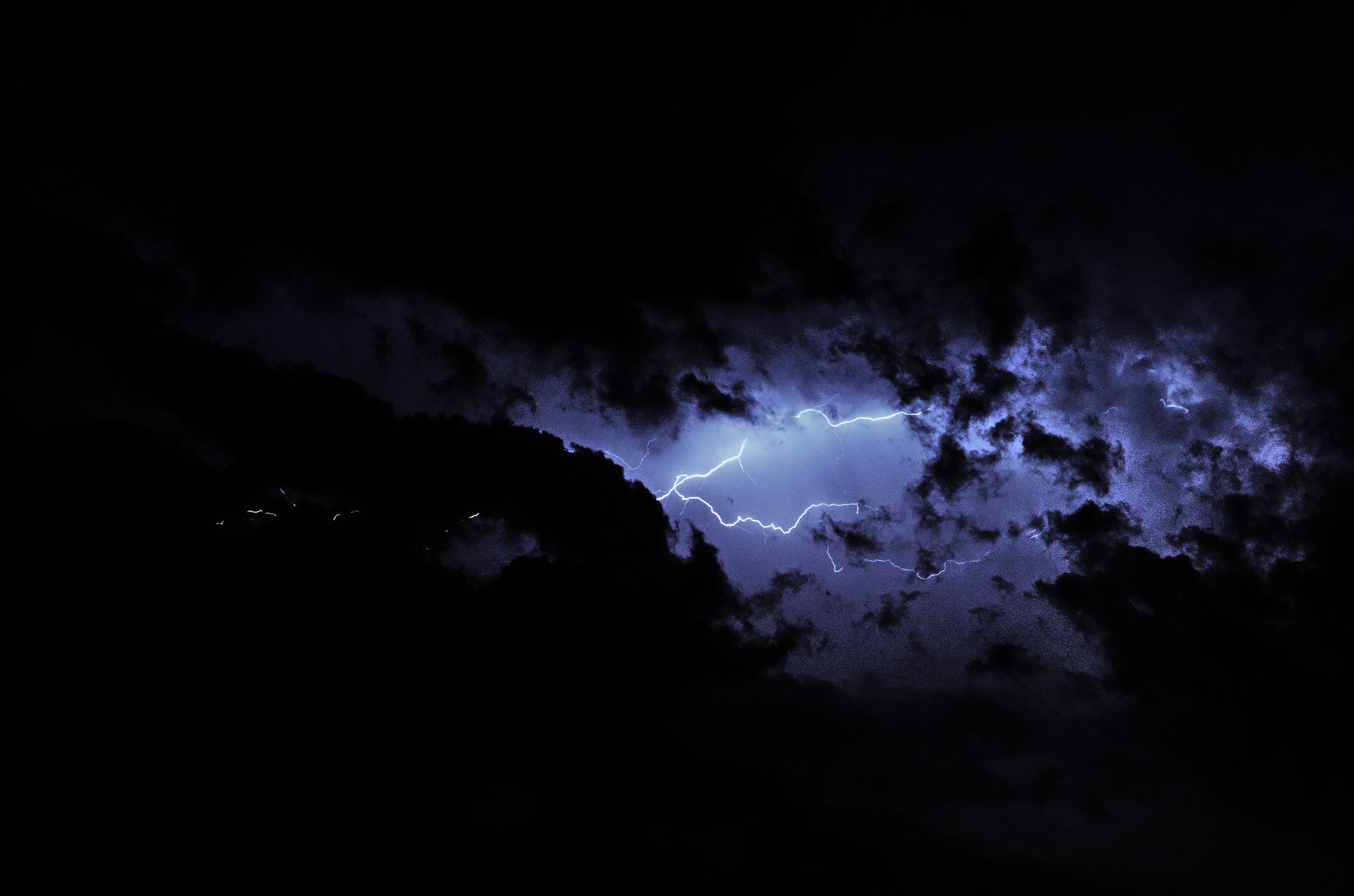 Photograph orage by joan koch on 500px