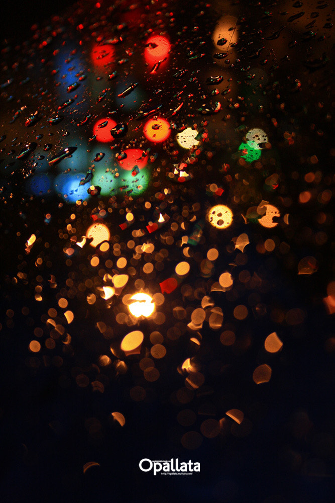 Photograph Raindrops by opallata on 500px