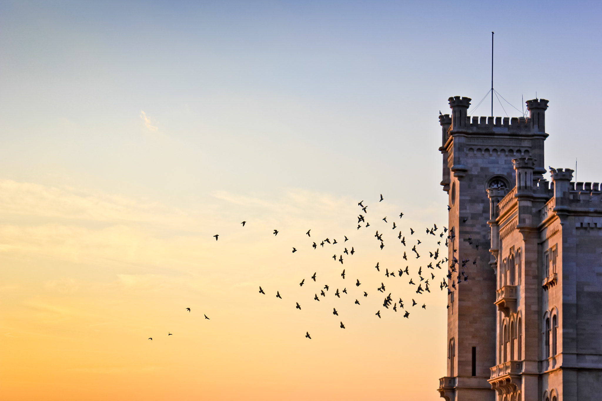 Photograph Flight at Sunset by Matteo Miotto on 500px