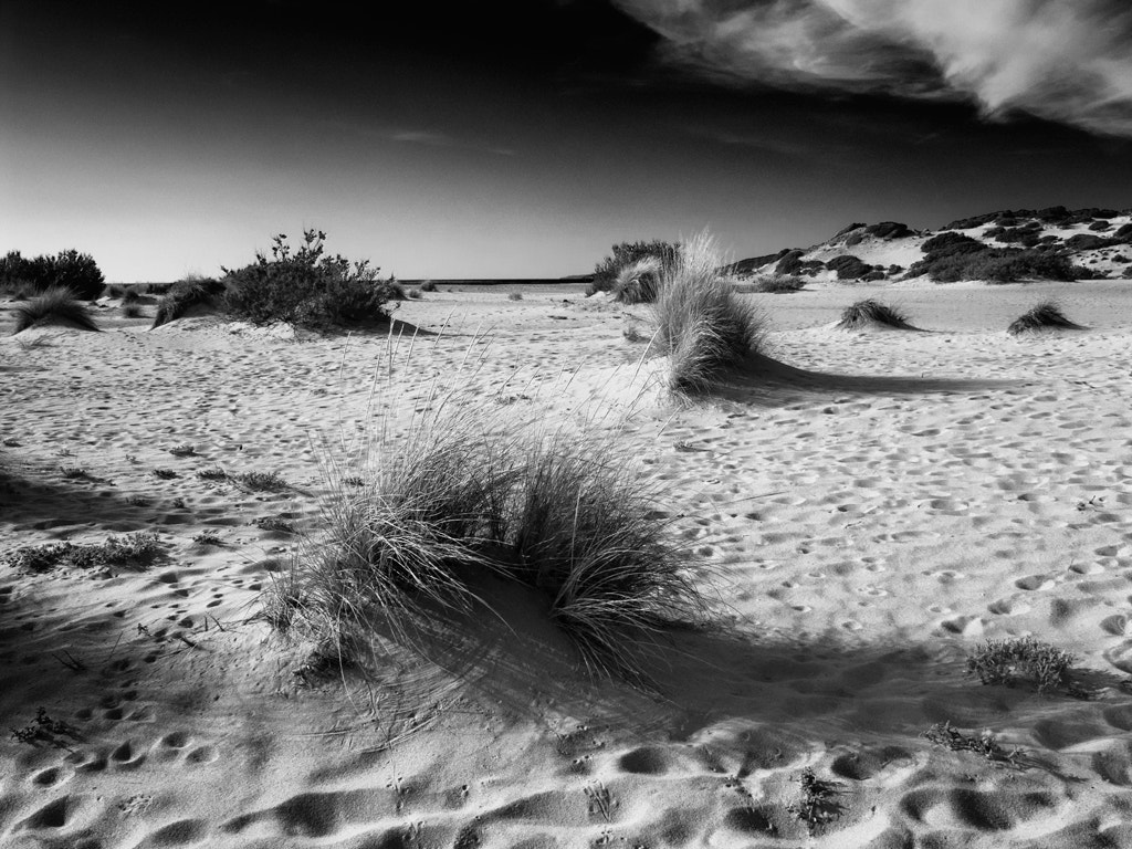 Photograph fascinating dunes by Beau Rivage on 500px