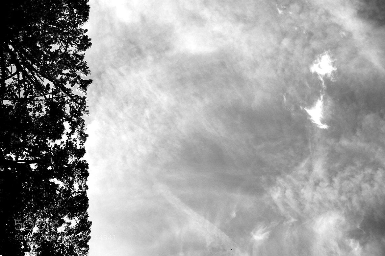 Photograph Parallelamente by Lorena La Rocca on 500px