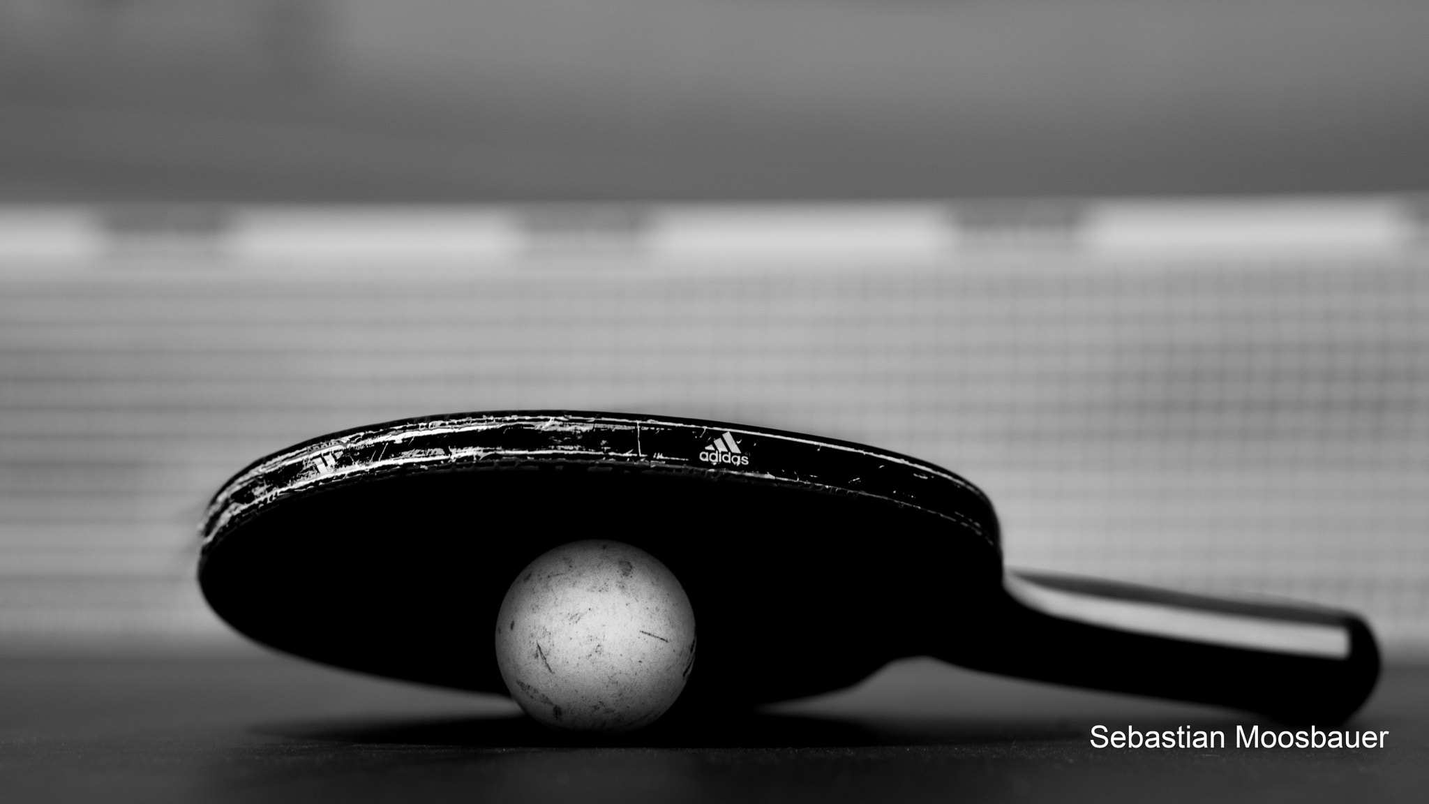 Photograph Ping Pong by Sebastian Moosbauer on 500px