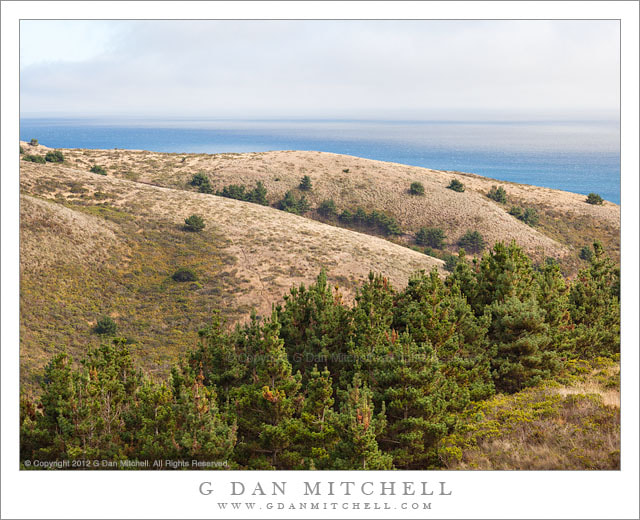 Photograph Hills and Trees Near Limantour, Drakes Bay by G Dan Mitchell on 500px